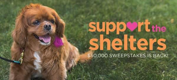 Help Humane Society of Walden win $30,000!