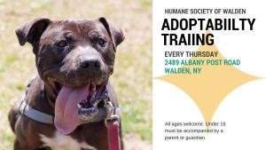 Adoptability Training @ The Humane Society of Walden | Walden | New York | United States