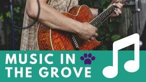 Music in the Grove @ Wooster Memorial Grove Park
