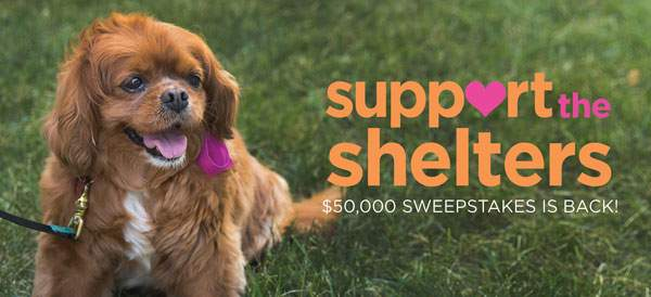 Help Humane Society of Walden win $30,000!