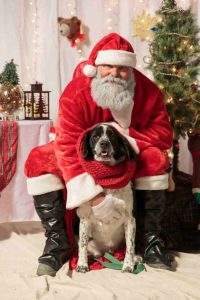 Pictures with Santa @ Humane Society of Walden NY