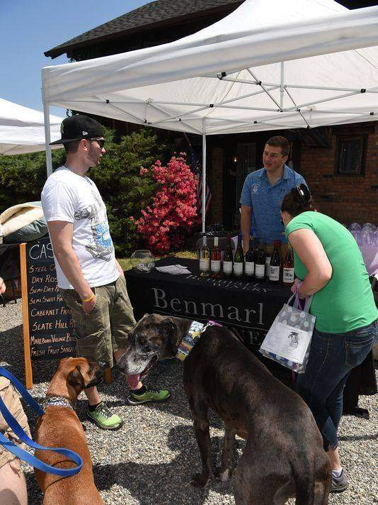 Wine With Your Canine at Benmarl Winery